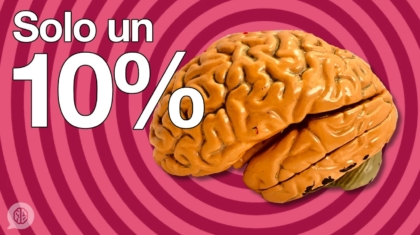 solo un 10%